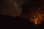 Noite estrelada do Papagaio. Foto: Thiago Foresti.
