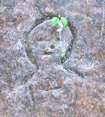 Inscrição em pedra na paisagem do rio Juruena. Foto: Edison Rodrigues.