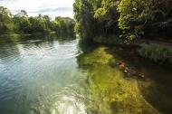 Águas cristalinas do rio Papagaio. Foto: Thiago Foresti.